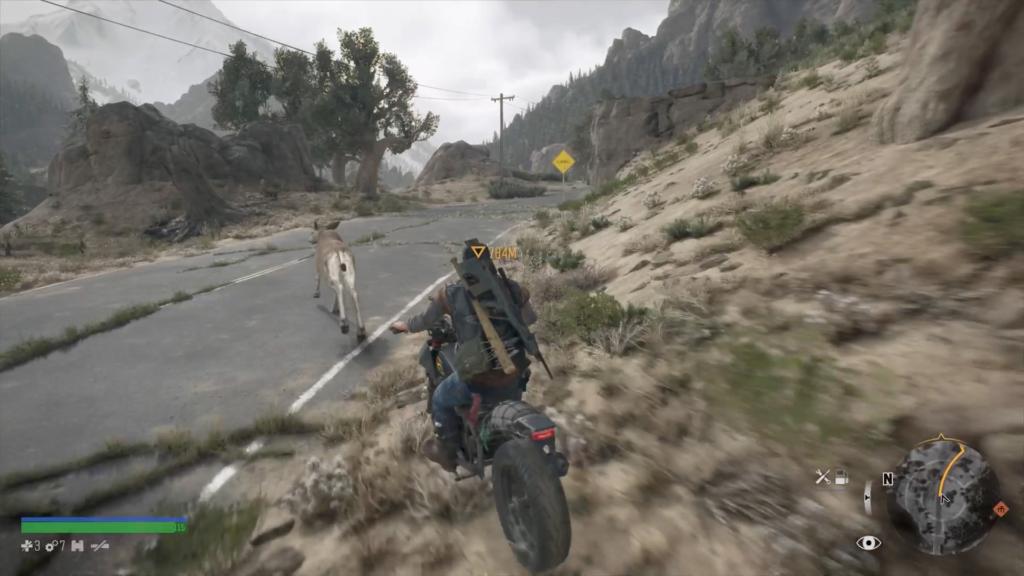 鹿をバイクで追いかける