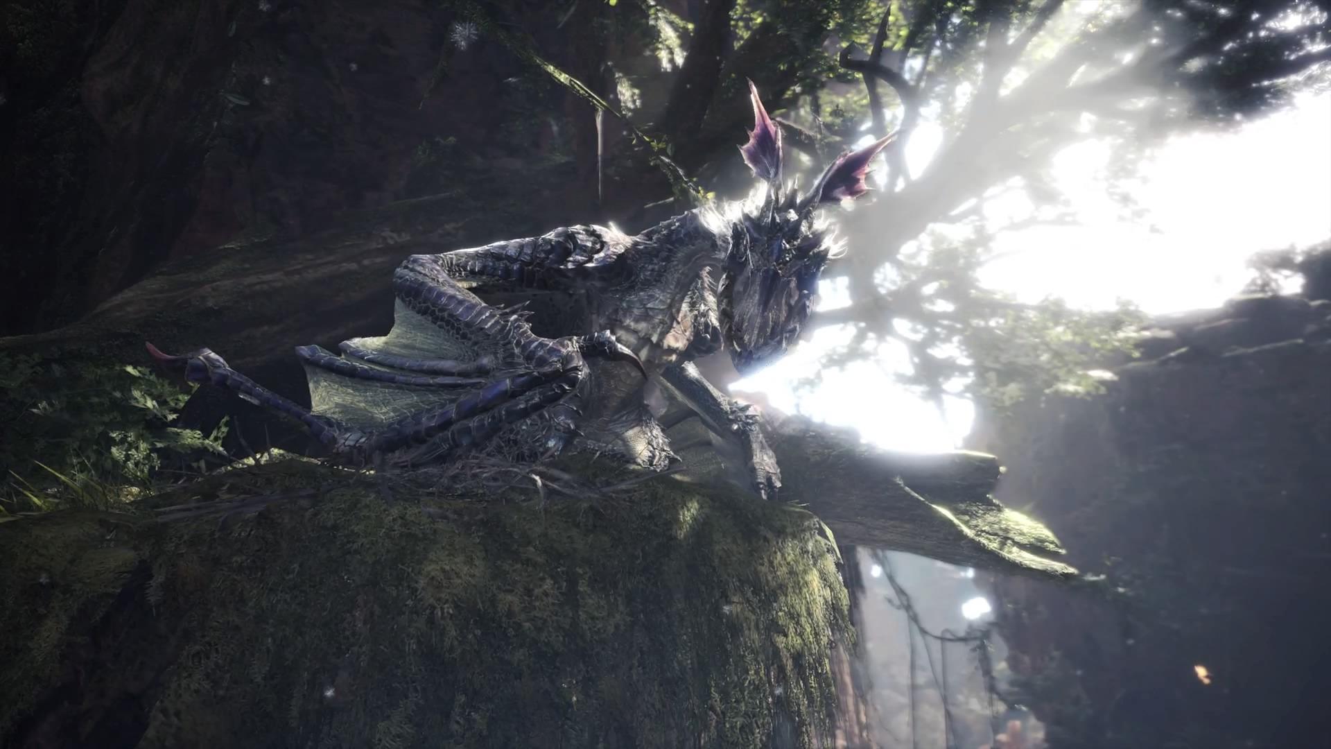 Mhw アイスボーン イャンガルルガの初期位置と出し方 カネノナルゲームブログ