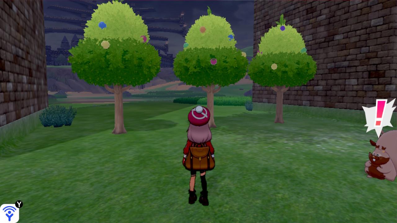 3つのきのみの木