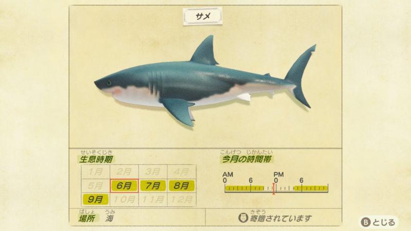 サメが釣れる季節と時間