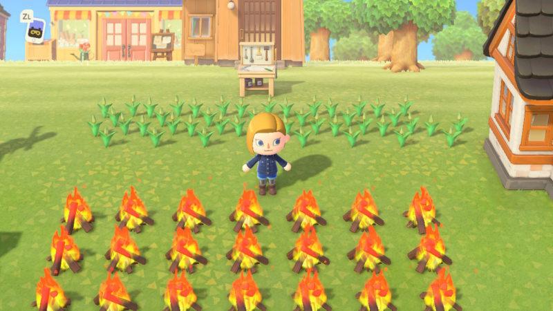 大量の焚火