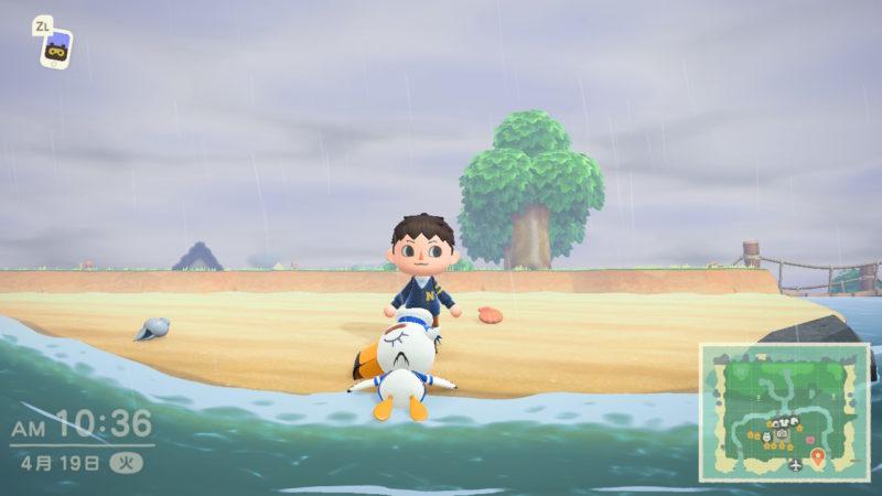 砂浜のジョニー
