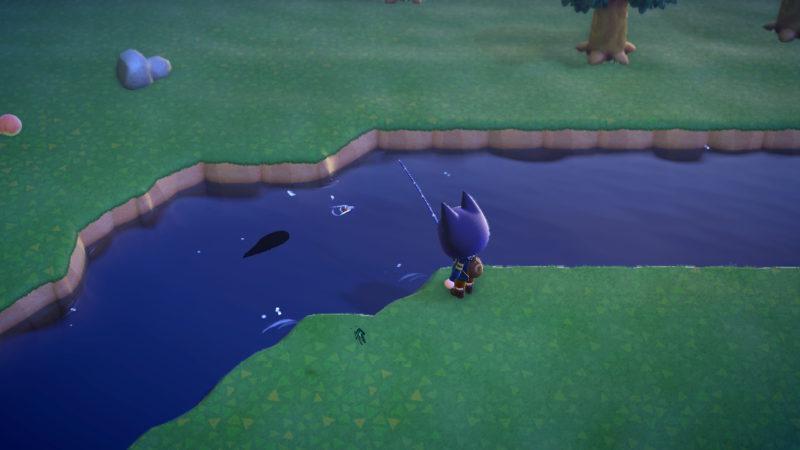 ドラドの魚影