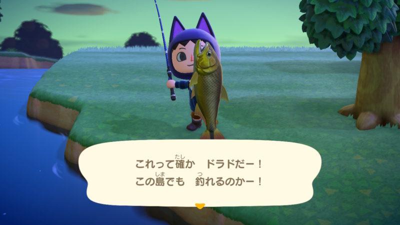 あつまれどうぶつの森で6月に釣れる魚