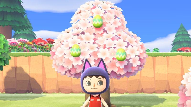 木にくっついた卵